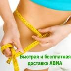 """ТАЙСКИЕ МИШКИ МИНУС 40  DC""  КУРС 2 МЕСЯЦА"